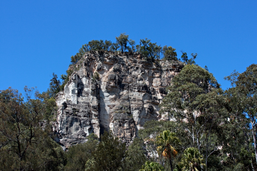 Carnarvon-gorge-05