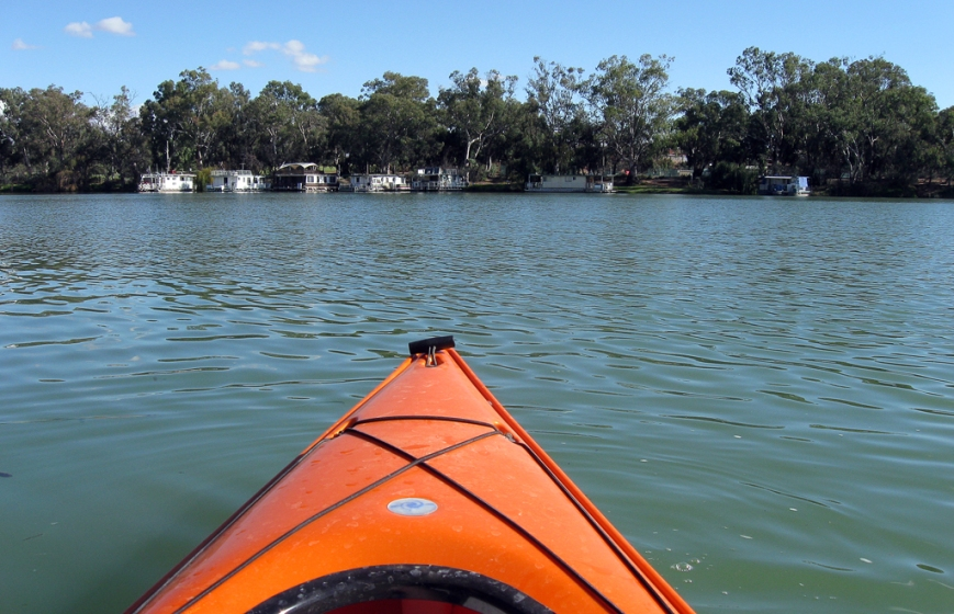 Paddling-up-the-Murray