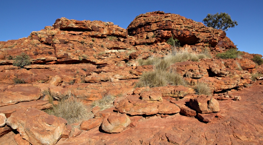 Kings-Canyon-6
