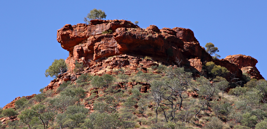 Kings-Canyon-Creek-Walk