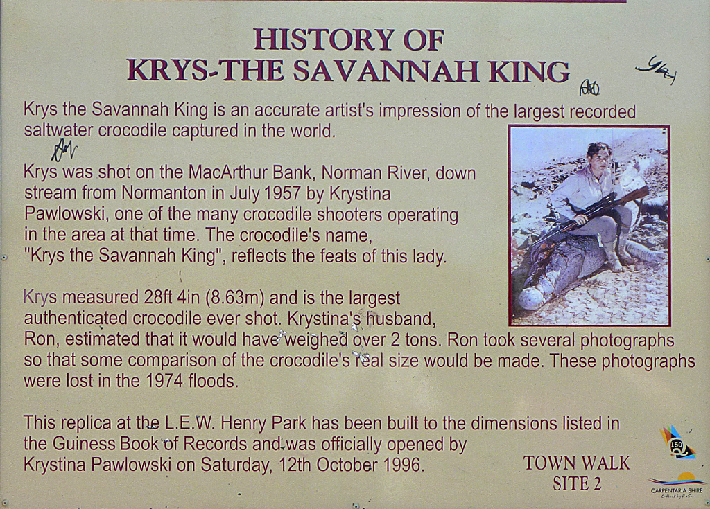 Kyrs-The-Savannah-King