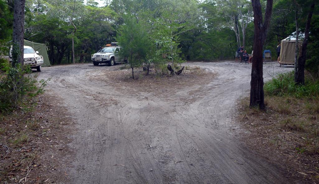 Cockatoo-Camping