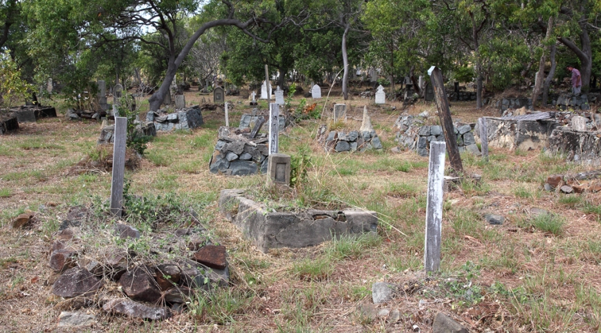 Japanese-Pear-Divers-graves