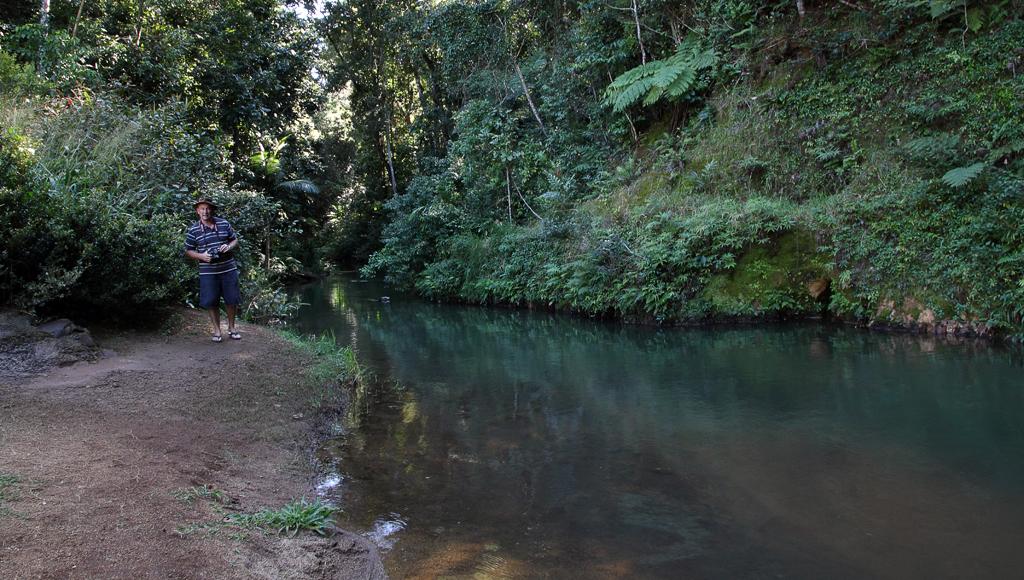 Malanda-Falls-Stream