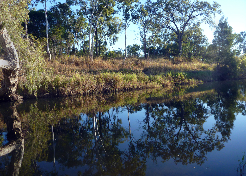 Reflections-at-Eureka-Creek